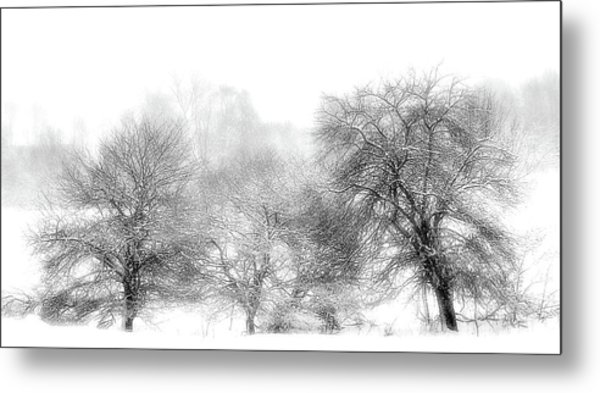 White Out Metal Print