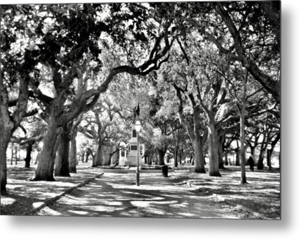 Metal Print featuring the photograph White Point Gardens At Battery Park Charleston Sc Black And White by Lisa Wooten