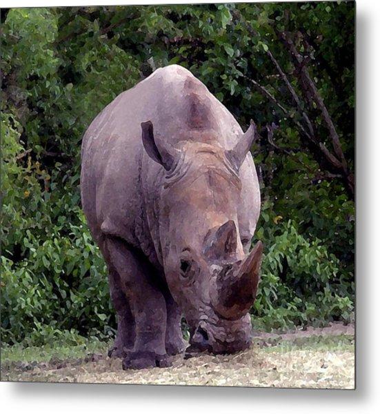 White Rhinoceros Water Coloring Metal Print