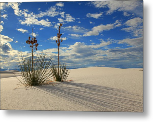 White Sands Afternoon 2 Metal Print