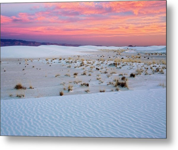 White Sands National Monument Metal Print by Bob Gibbons/science Photo Library