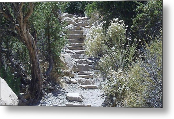 White Steps Metal Print