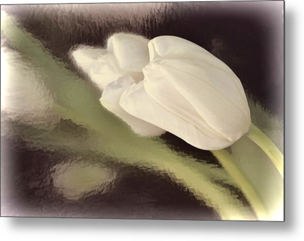 White Tulip Reflected In Misty Water Metal Print