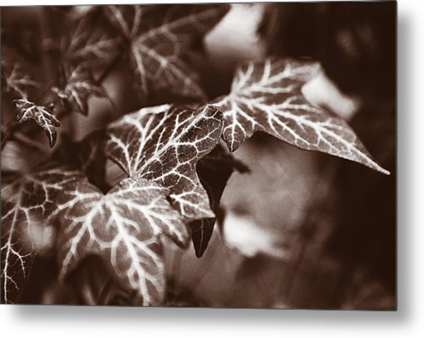 White Veins Metal Print