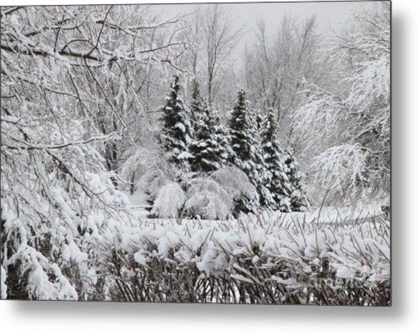 White Winter Day Metal Print