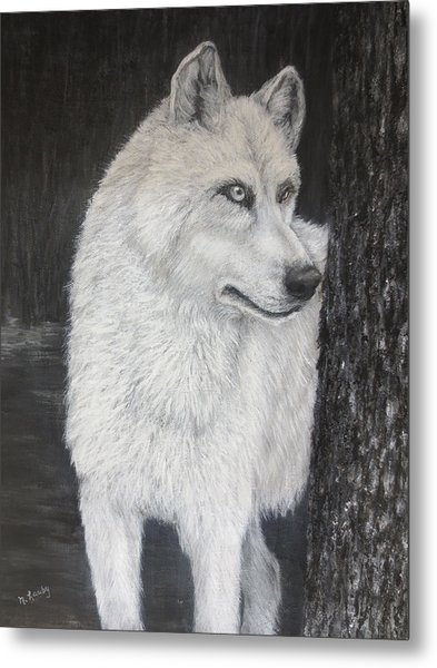 White Wolf On Guard Metal Print