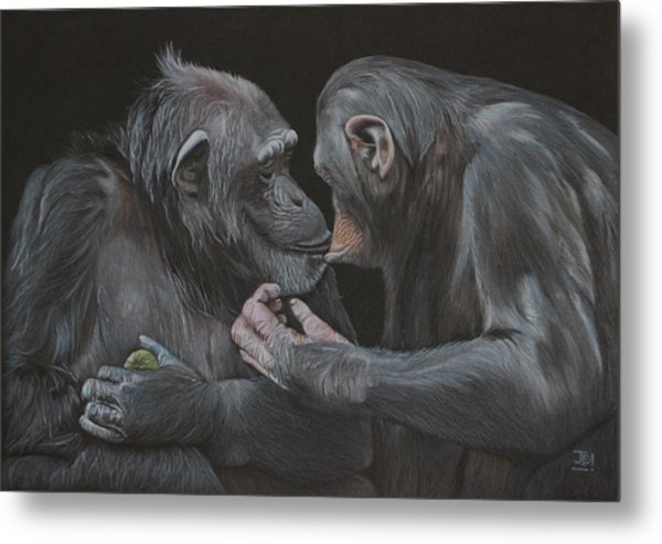 Who Gives A Fig? Metal Print