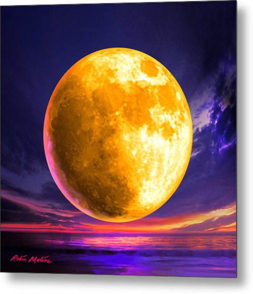Whole Of The Moon Metal Print