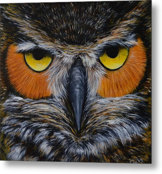 Whooo Is Looking At You? Metal Print