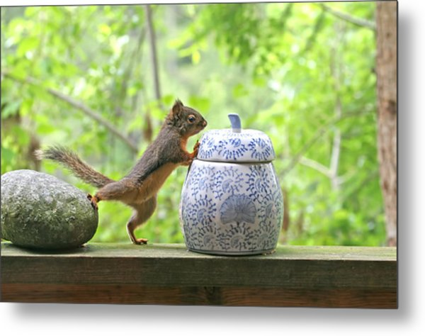 Who's Been In The Cookie Jar? Metal Print