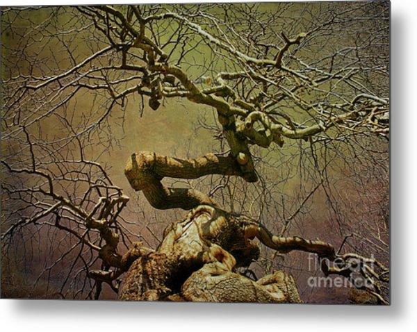 Wicked Tree Metal Print