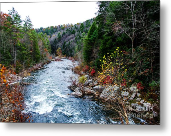 Wild And Scenic Obed River Metal Print