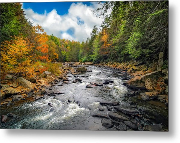 Wild Appalachian River Metal Print
