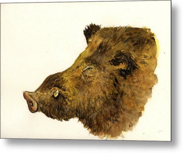 Wild Boar Head Study Metal Print