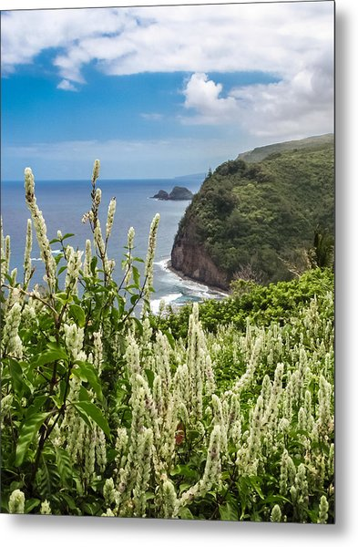 Wild Flowers At Pololu Metal Print