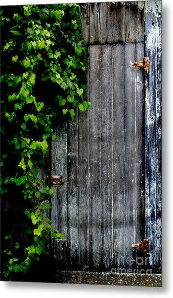Wild Grape Vine Door Metal Print