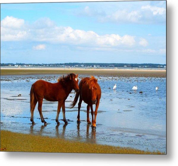 Wild Horses And Ibis 2 Metal Print