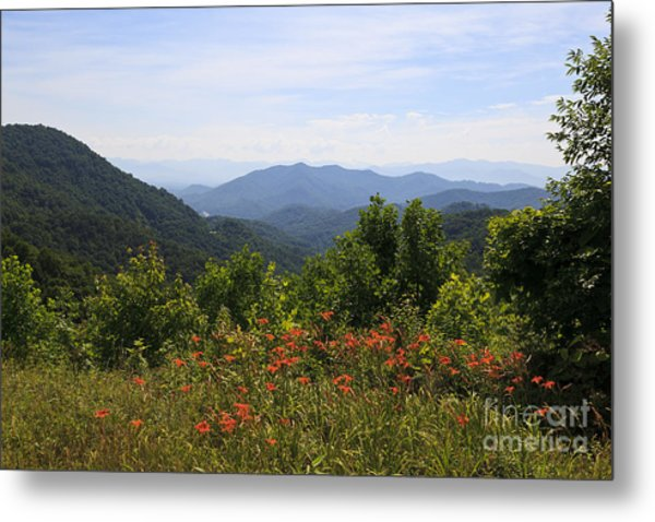 Wild Lilies With A Mountain View Metal Print