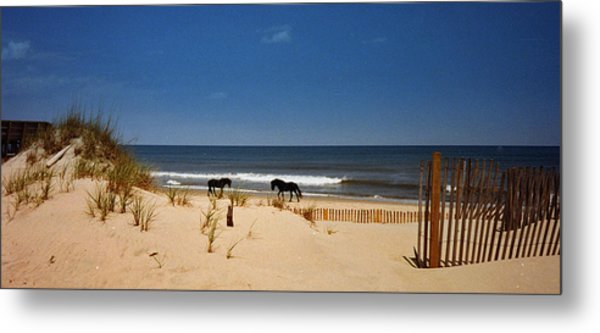 Wild On The Beach Metal Print