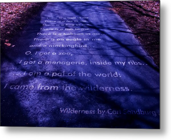 Wilderness - Carl Sandburg Metal Print