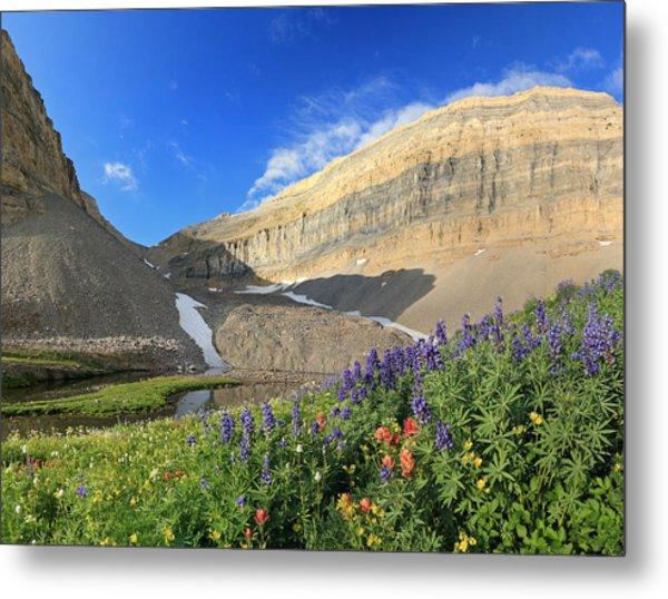 Wildflowers At Emerald Lake. Metal Print