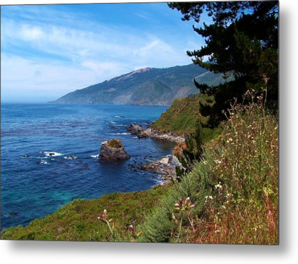 Wildflowers On The Coast Metal Print