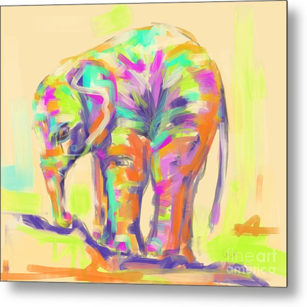 Wildlife Baby Elephant Metal Print