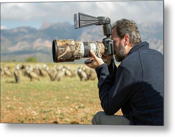Wildlife Photographer Nicolas Reusens Metal Print