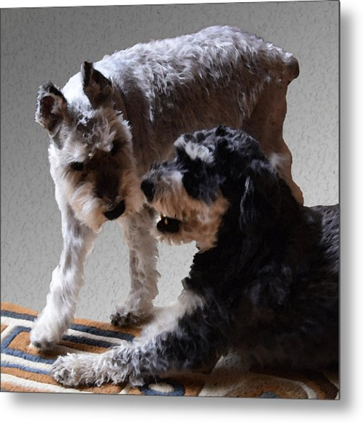 Will And Atticus Metal Print