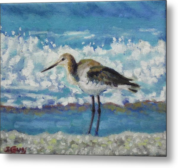 Willet Metal Print by Sharon Guy