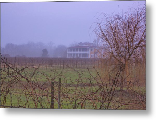 Willow Creek In Fog Metal Print