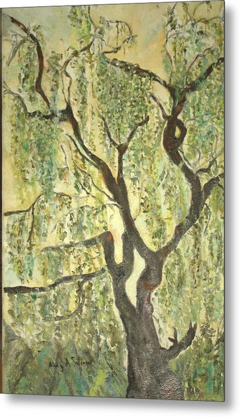 Willow Tree Metal Print