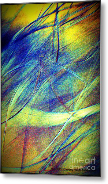 Wind Metal Print by JCYoung MacroXscape