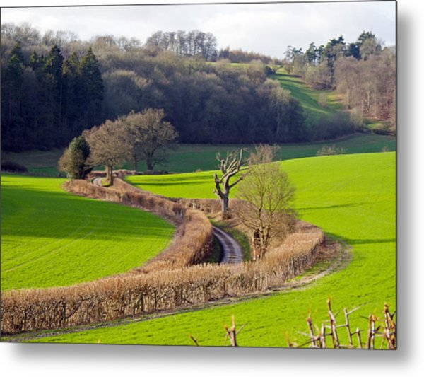 Winding Country Lane Metal Print