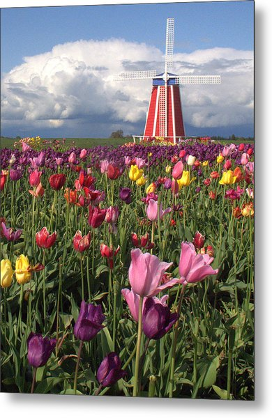 Windmill In The Tulips Metal Print