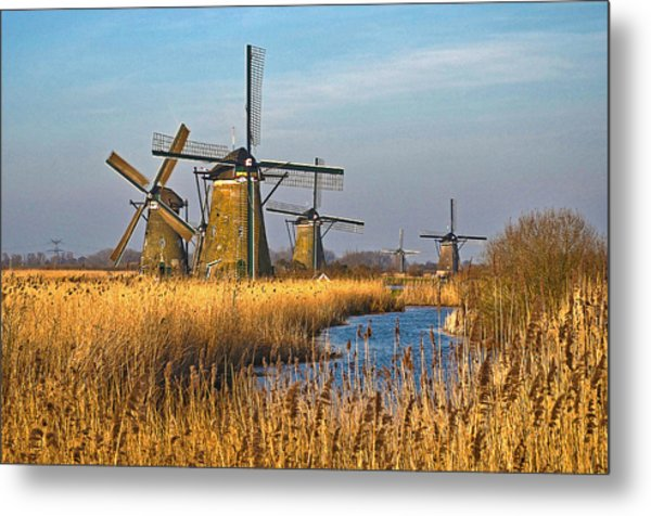 Windmills And Reeds Near Kinderdijk Metal Print