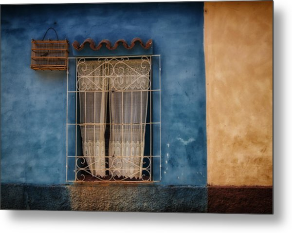 Window And The Birdcage Metal Print
