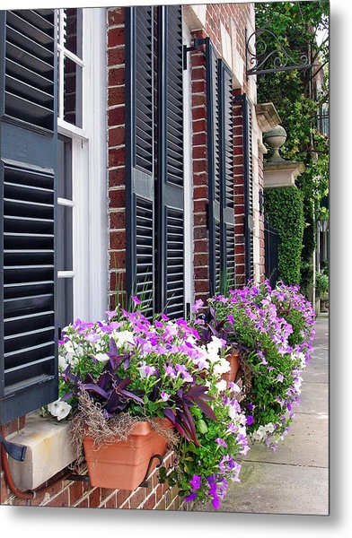 Window Box 2 Metal Print by Sarah-jane Laubscher