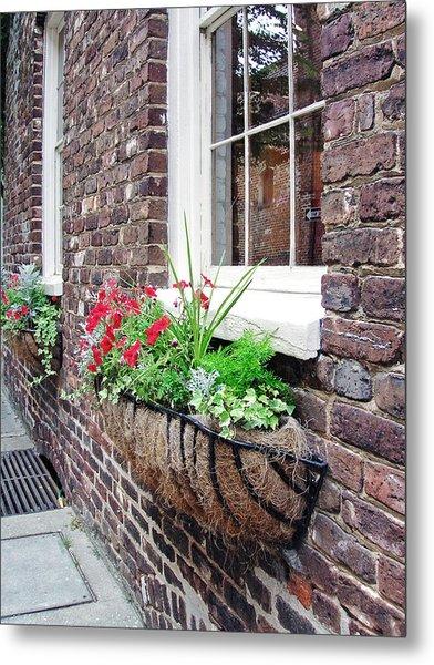 Window Box 3 Metal Print by Sarah-jane Laubscher