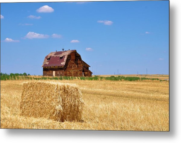 Windswept And Lonely Colorado Barn Metal Print