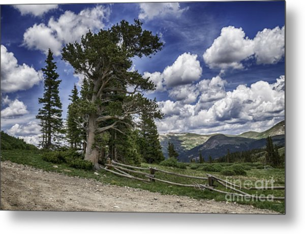Windy Ancients Metal Print