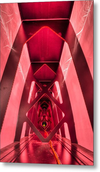 Wing Cathedral Metal Print by Chris Cameron