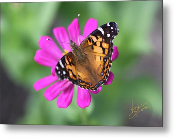 Winged Beauty Metal Print