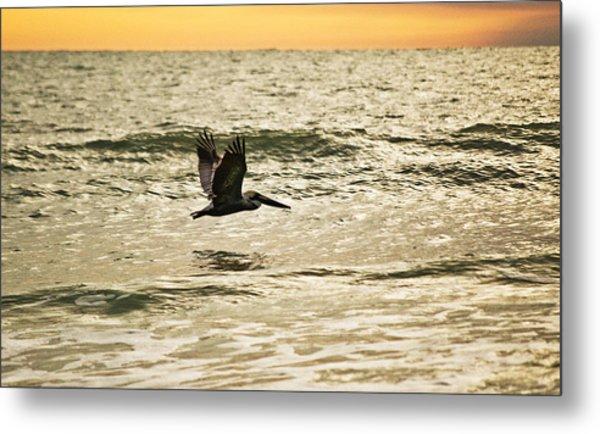 Wings Over Water Wil 270 Metal Print