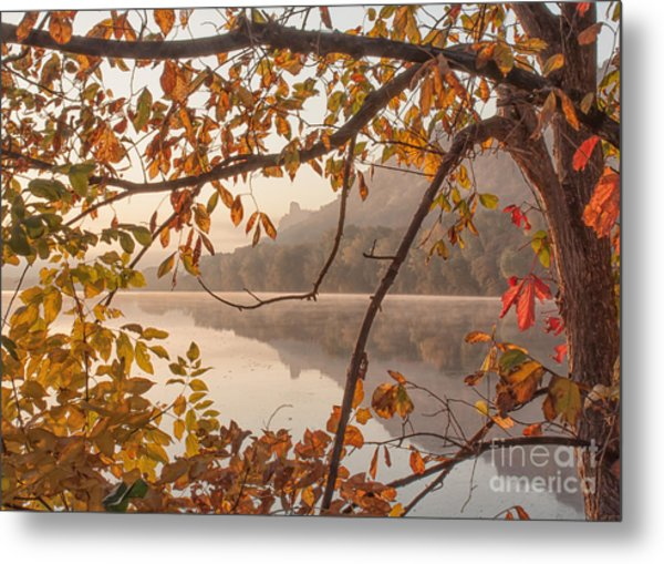 Metal Print featuring the photograph Winona Photograph Sugarloaf Through Leaves by Kari Yearous