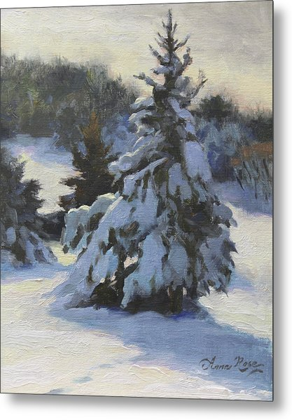 Winter Adornments Metal Print