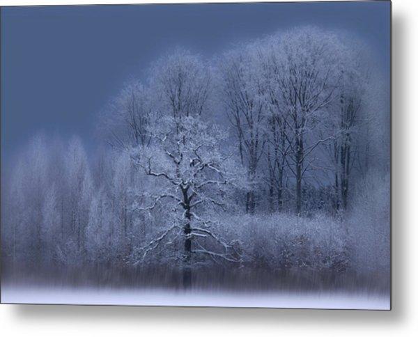 Winter Metal Print by Allan Wallberg
