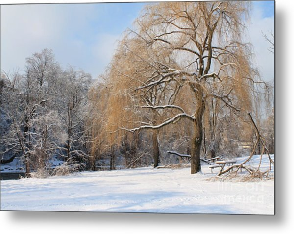 Winter Along The River Metal Print