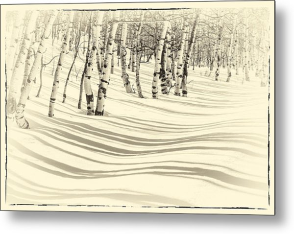 Winter Aspen Metal Print