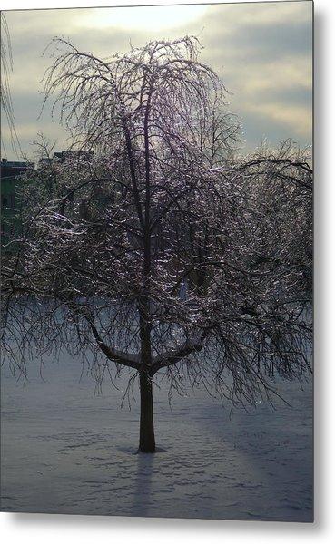 Winter Candelabrum Metal Print